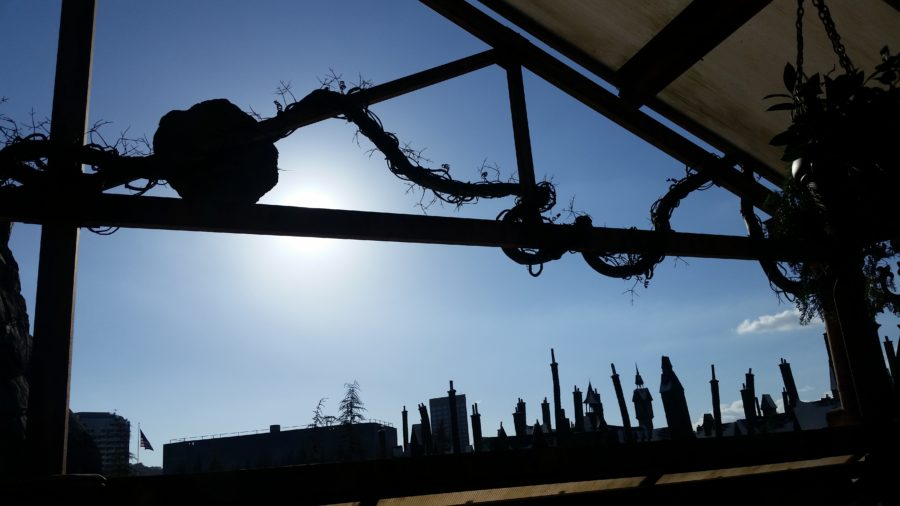 hogsmeade rooftops